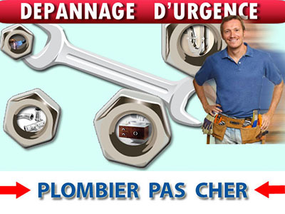 Pompage Eau Crue Bailly Romainvilliers 77700
